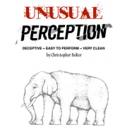 Unusual Perception by Chris Bolter-39000