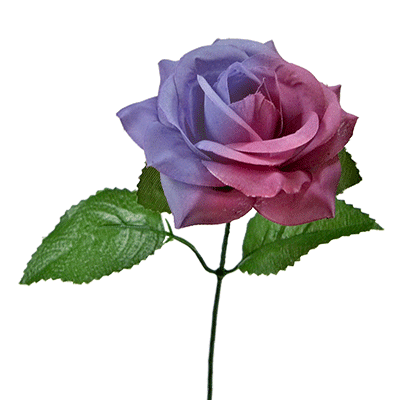The Real Color Changing Flower by JL Magic - Trick for £15 ...